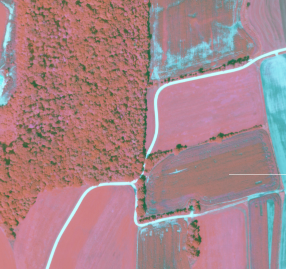 Multispectral Analysis Images Multispectral Analysis